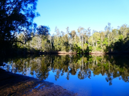 Warrell creek 5